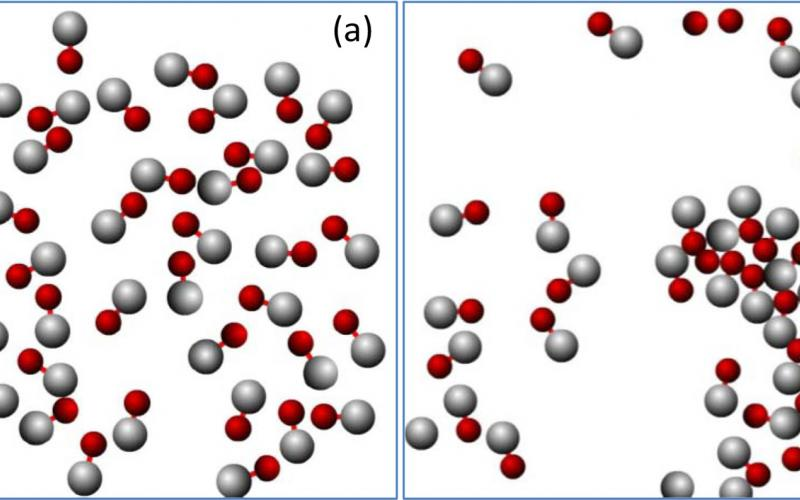 Two instantaneous configurations of an ensemble of 40 sphere-dimer motors in an oscillating medium